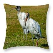 A Serious Woodstork Throw Pillow