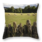 A Sheep's Field Throw Pillow