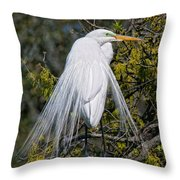 A Side Glance Throw Pillow