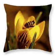A Sign Of Spring Throw Pillow