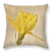 A Simple Daffodil Throw Pillow