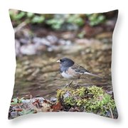 A Simple Drink Throw Pillow