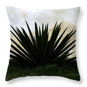 A Simple Yucca Throw Pillow