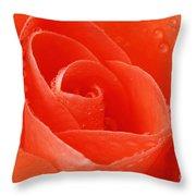 A Single Bloom 3 Throw Pillow