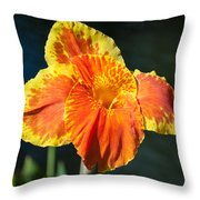 A Single Orange Lily Throw Pillow