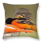A Sip From The Other Side Throw Pillow