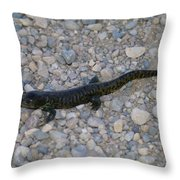 A Slow Salamander  Throw Pillow