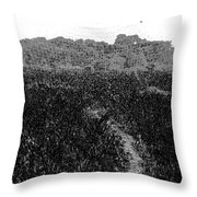 A Small Path Through Very Tall Grass Inside The Okhla Bird Sanctuary Throw Pillow