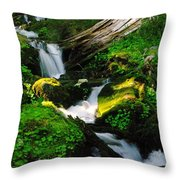 A Small Slice Of Paradise Throw Pillow