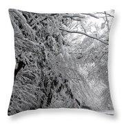A Snowy Drive Through Chestnut Ridge Park Throw Pillow