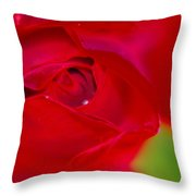 A Soft Wet Rose Throw Pillow