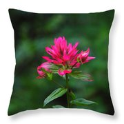 A Sole Wildflower Throw Pillow