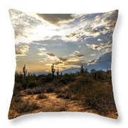 A Sonoran Desert Sunset  Throw Pillow