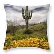 A Southwestern Style Spring Throw Pillow