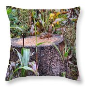 A Special Kind Of Cute Throw Pillow