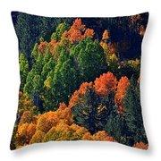 A Splash Of Color Throw Pillow