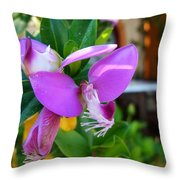 A Splash Of Fuchsia Throw Pillow