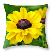 A Splash Of Sunshine Throw Pillow