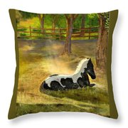 A Spot In The Sun Throw Pillow