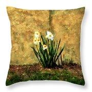 A Spot Of Spring Throw Pillow