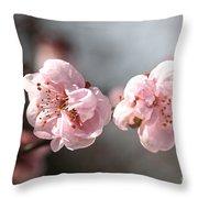 A Spring Dream Throw Pillow