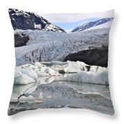 A Spring Past Throw Pillow