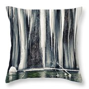 A Spring That Knows No Summer. Throw Pillow