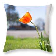 A Spring Tulip Throw Pillow