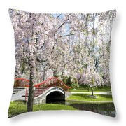 A Spring Walk Throw Pillow by Paul W Faust -  Impressions of Light