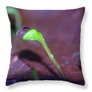 A Sprout Lifting A Waterdrop Throw Pillow
