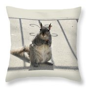 A Squirrel Known As Chippy Throw Pillow
