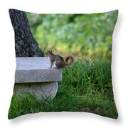 A Squirrel's Day Out Throw Pillow