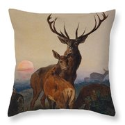A Stag With Deer In A Wooded Landscape At Sunset Throw Pillow