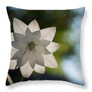 A Star In My Garden Throw Pillow by Georgia Mizuleva