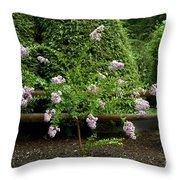 A Starburst Of Pink Throw Pillow