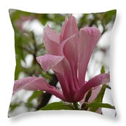 A Steady Rain Throw Pillow