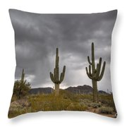 A Storm In The Sonoran Desert Throw Pillow