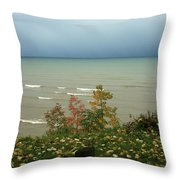 A Storm Is Brewing Throw Pillow by Kathy DesJardins
