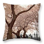 A Stroll In Central Park Throw Pillow