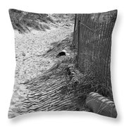 A Stroll In The Sand Throw Pillow