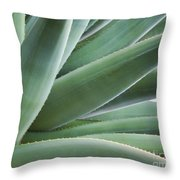 A Succulent Life Throw Pillow