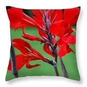 A Summer Red Flower Throw Pillow