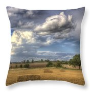 A Summers Evening Farm Throw Pillow