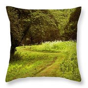 A Summer's Trail Throw Pillow