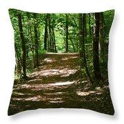 A Summer's Walk Throw Pillow