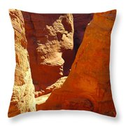 A Sun Soaked Dry Gulch Throw Pillow