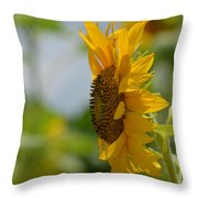 A Sunflower Profile Throw Pillow