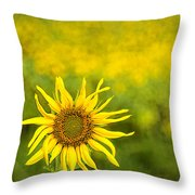 A Sunny Funny Day Throw Pillow