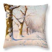 A Sunny Winter's Day Throw Pillow