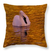 A Swan On Golden Waters Throw Pillow